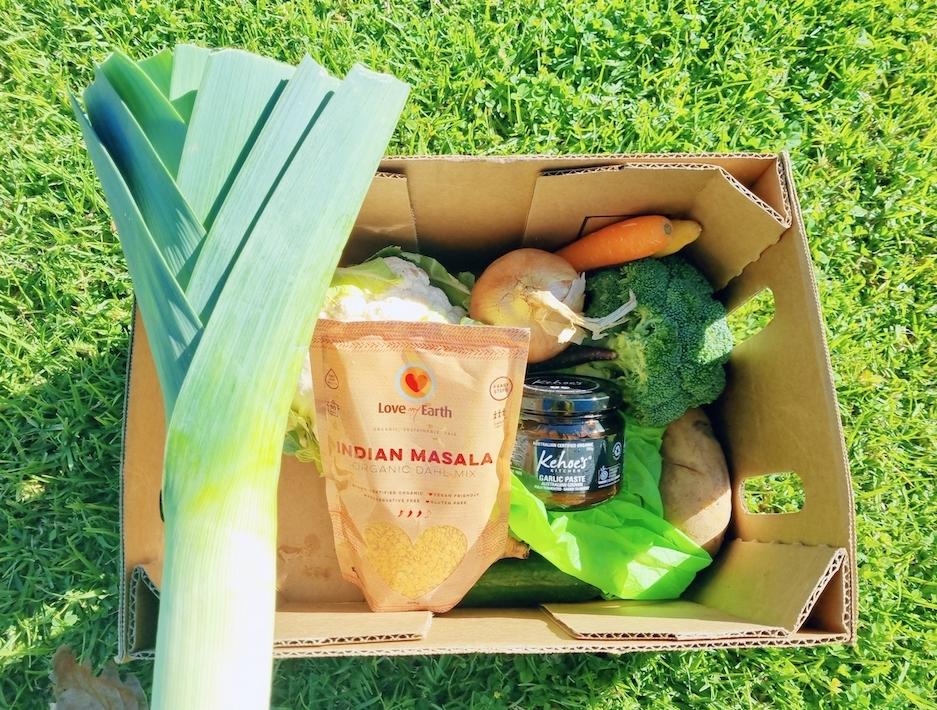 [Spring Lakes Life] Mini veggie box & Customer review
